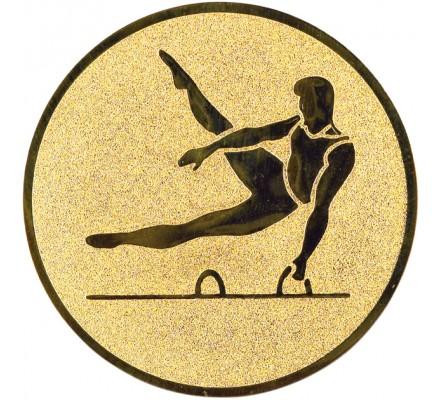 Centre gym masculin Diam. 25 mm