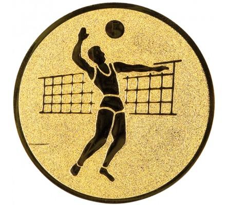 Centre volley-ball 2 Diam. 25 mm