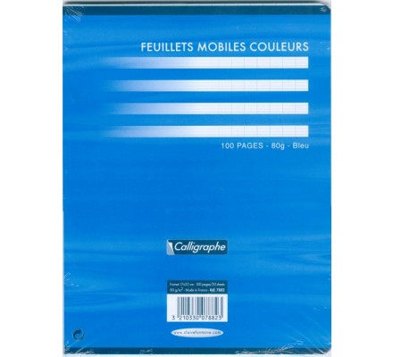 Feuillets mobiles 17x22 - bleu - 100 p - séyès