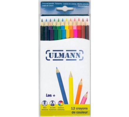 Crayons de couleur x 12