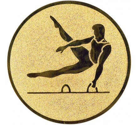 Centre gym masculin Diam. 25 mm