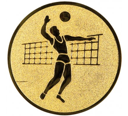 Centre volley-ball 2 Diam. 25 mm