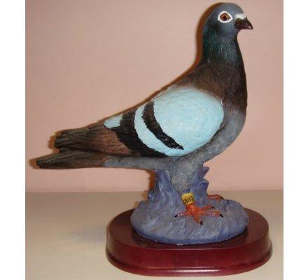 Trophée pigeon 31 cm - CRS910-A
