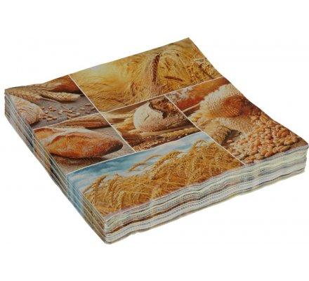 20 serviettes en papier 33 x 33 cm